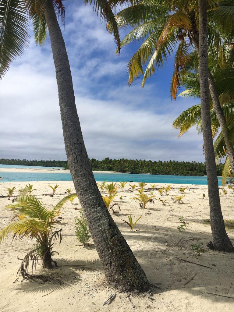 Palmenstrand auf One Foot Island